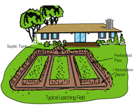 leaching-field septic system